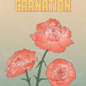 Red Carnation Flowers Illustration