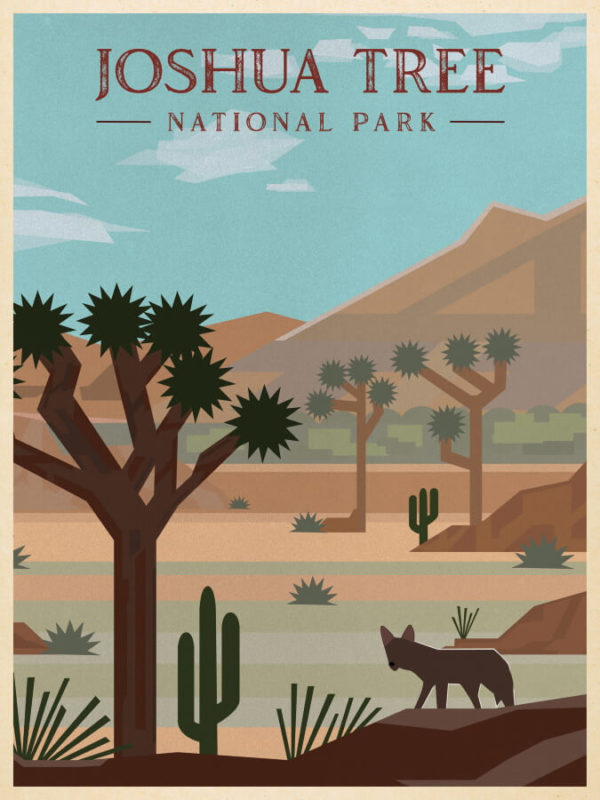 Joshua Tree National Park Illustration