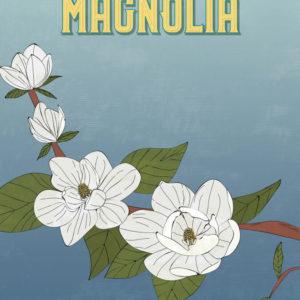 White Magnolia Flowers Illustration