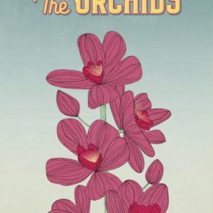 Pink Orchids Illustration